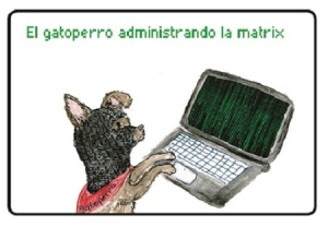 The CatDog, with paliacate and computer.